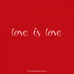 Love is Love Gay Marriage quote