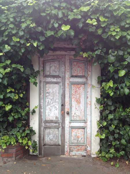 Rustic doors in Carmel