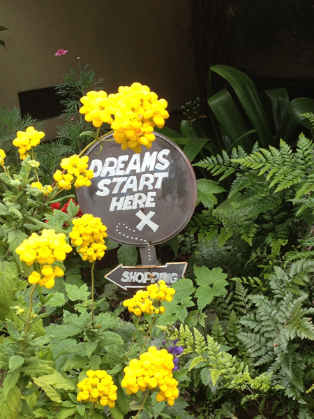 Dreams start here sign in Carmel