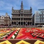 Carpet of flowers in Brussels. Design inspiration by destination wedding planner Jamie Chang of Mango Muse Events
