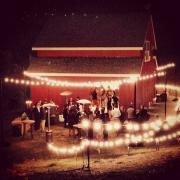 DIY lighting for a backyard private estate wedding in Healdsburg designed by Destination wedding planner Mango Muse Events