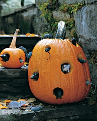 Fake mice coming out of pumpkin - Halloween decoration.