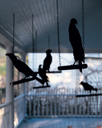 Outdoor hanging ravens idea for Halloween decoration.