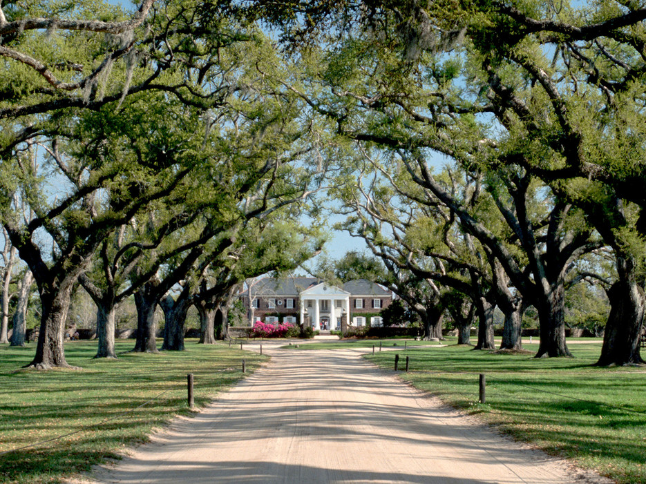 Destination wedding venue Boone Hall Plantation in Charleston, South Carolina one of a few celebrity destination wedding venues