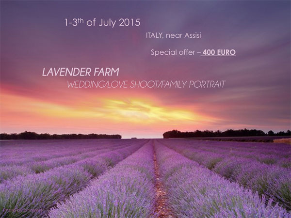 Lavender farm in Italy for a destination wedding photoshoot by Warm Photo Photography.