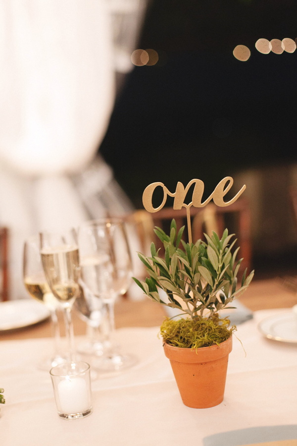 Gold cursive table number in a mini olive tree for a Sonoma destination wedding by Destination wedding planner Mango Muse Events