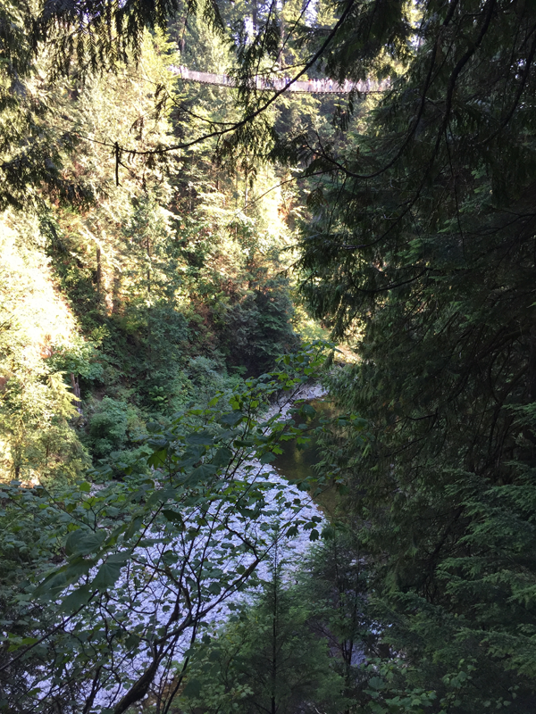 Hiking in Vancouver. Photo taken by Jamie Chang destination wedding planner of Mango Muse Events.