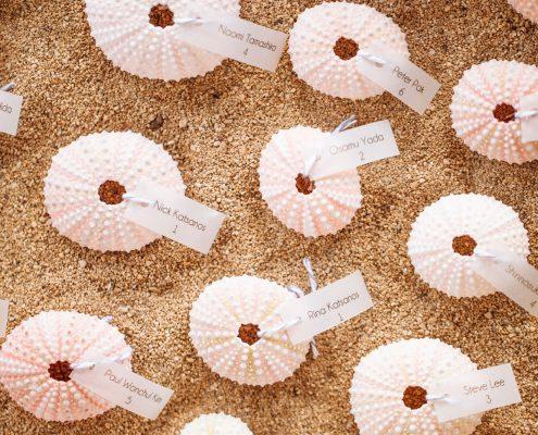 Sea urchin escort cards in sand at a Hawaii destination wedding by Destination wedding planner Mango Muse Events