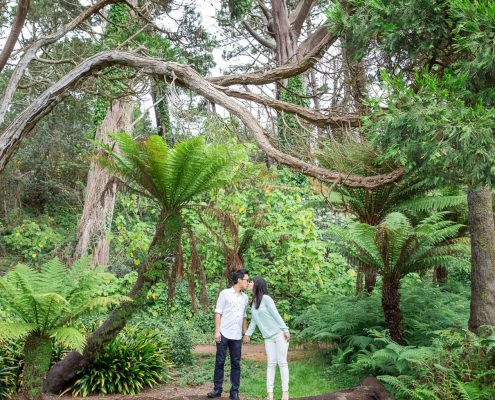 A couple taking their engagement photos in San Francisco's Golden Gate Park