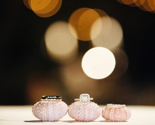 Wedding rings on sea urchins at a Hawaii destination wedding by Destination wedding planner, Mango Muse Events
