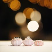 Engagement and wedding rings sitting on sea urchins at a Hawaii destination wedding by Destination wedding planner Mango Muse Events