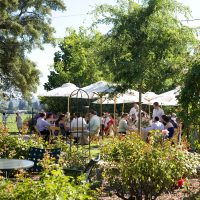 Wedding reception set up at the Healdsburg Country Gardens planned by Destination wedding planner, Mango Muse Events