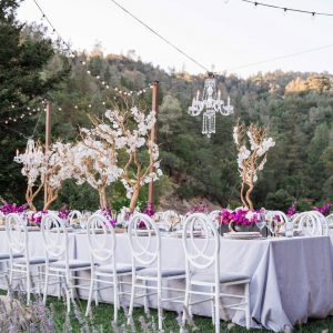 A wedding reception set up on a lawn with string lights, chandeliers and tree branch table decor. Planned and designed by Mango Muse Events