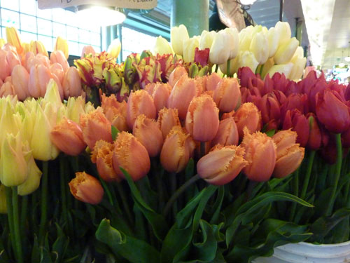 Seattle Pike Place Market Parrot Tulips for May flower inspiration by Destination wedding planner, Mango Muse Events