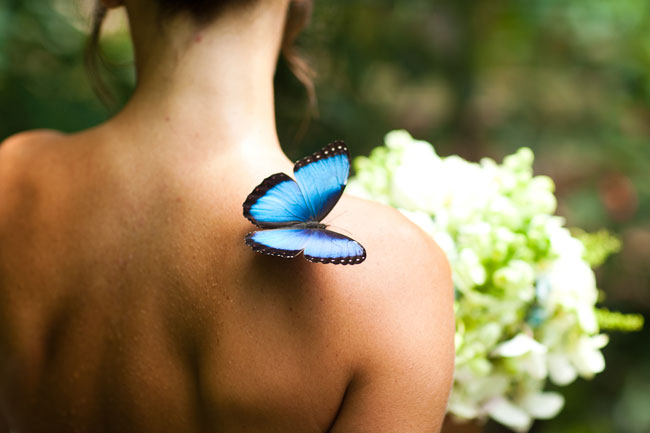 Butterfly wedding Costa Rica destination wedding by Destination wedding planner, Mango Muse Events