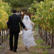 Couple walking amongst the grape vines at a vineyard wedding by Destination wedding planner, Mango Muse Events