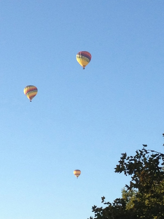Hot air balloons over Napa wine country