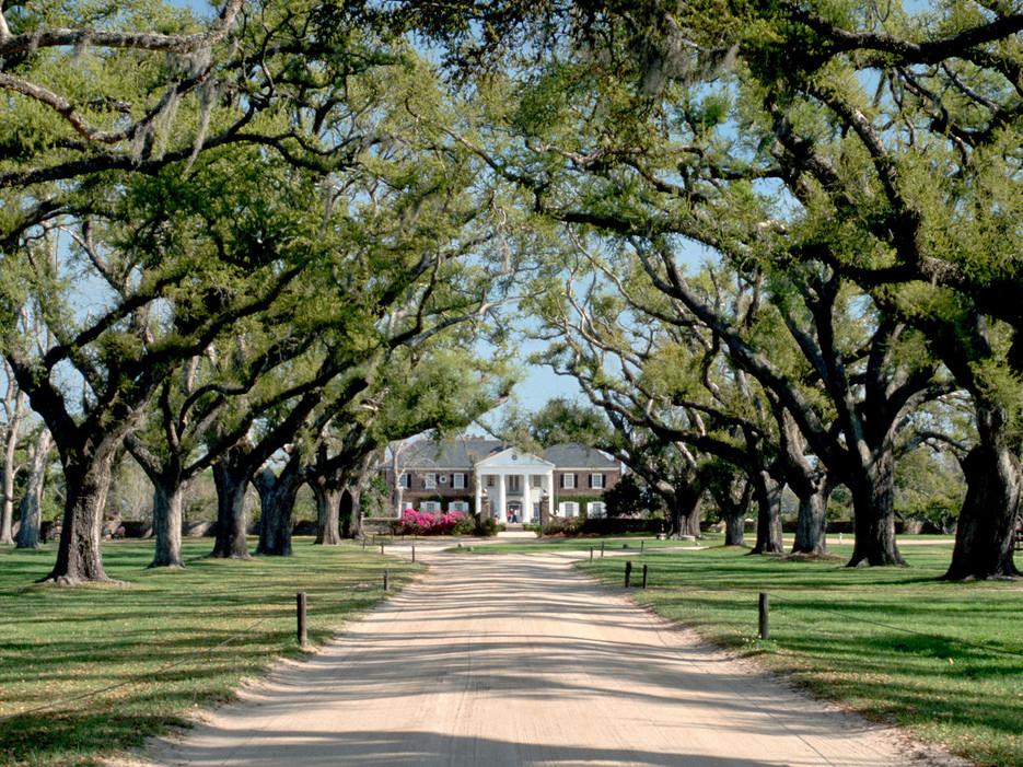 Destination wedding venue Boone Hall Plantation in Charleston, South Carolina one of a few celebrity destination wedding venues
