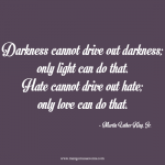 Darkness cannot drive out darkness; only light can do that. Hate cannot drive out hate; only love can do that. MLKing quote.