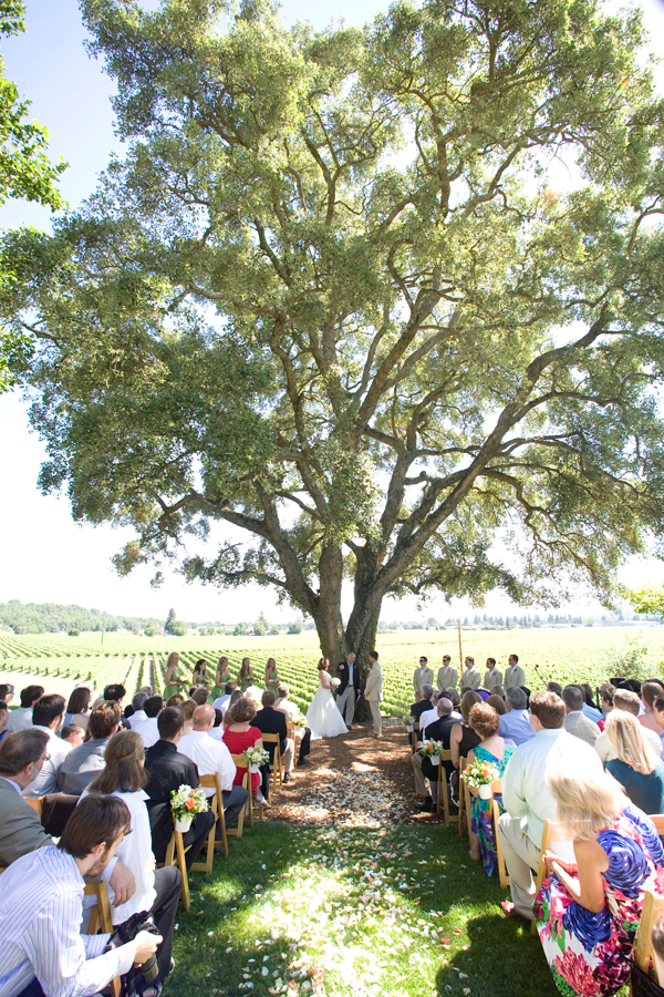 Outdoor destination wedding in Healdsburg by Jamie Chang destination wedding planner of Mango Muse Events.