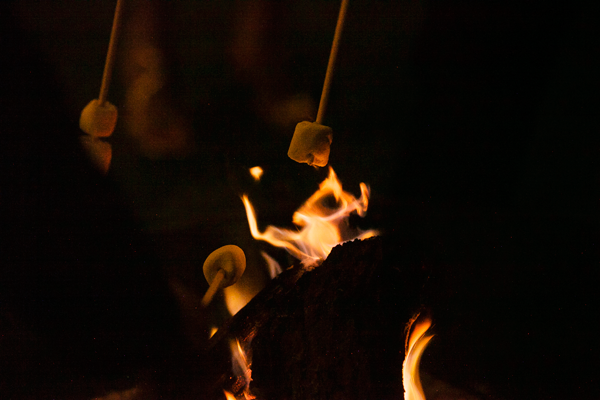 Making s'mores, an idea for an outdoor summer party.