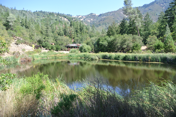 Peaceful honeymoon location at Calistoga Ranch in Napa Valley