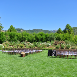 The ceremony lawn at destination wedding venue at Solage Calistoga.
