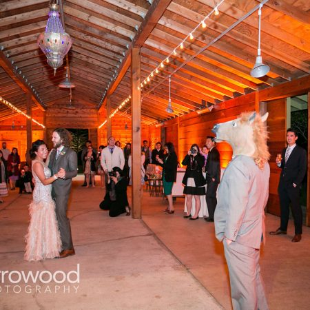 First dance with a horse at a Sonoma destination wedding by Destination wedding planner Mango Muse Events