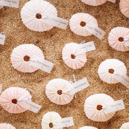 Sea urchin escort cards in sand at a Hawaii destination wedding by Destination wedding planner Mango Muse Events