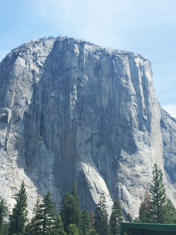 The heart of El Capitan at Yosemite National Park taken by Destination wedding planner Mango Muse Events