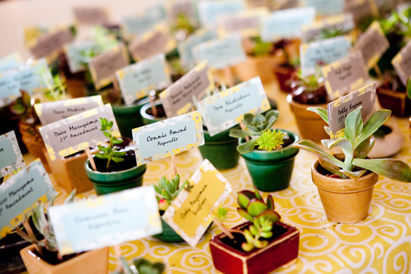 Succulent plants as seating cards and favors at a Half Moon Bay wedding by Destination wedding planner Mango Muse Events