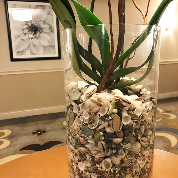 Colored sea shells as an alternative beachy holiday decor idea by Mango Muse Events, destination wedding planner