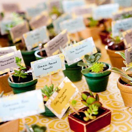 Succulent seating cards and favors at a Half Moon Bay wedding by Destination wedding planner Mango Muse Events