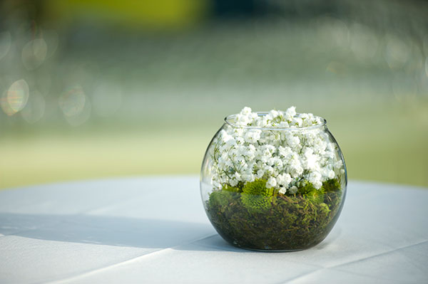 Simple floral centerpiece with baby's breath, moss and green mums for a wedding in Hawaii by Destination wedding planner, Mango Muse Events