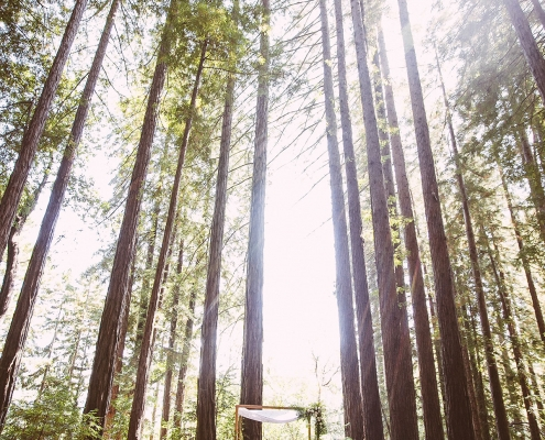 Hand made chuppah at a inter-faith Jewish wedding ceremony in the redwoods by destination wedding planner Mango Muse Events
