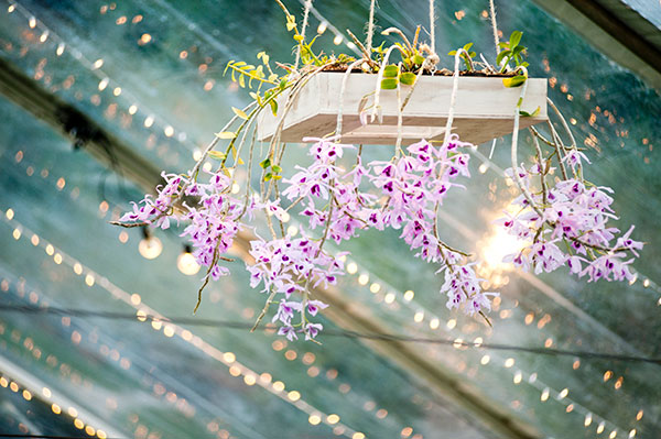 Custom designed hanging orchid chandelier at a Hawaii tent wedding by destination wedding planner Mango Muse Events
