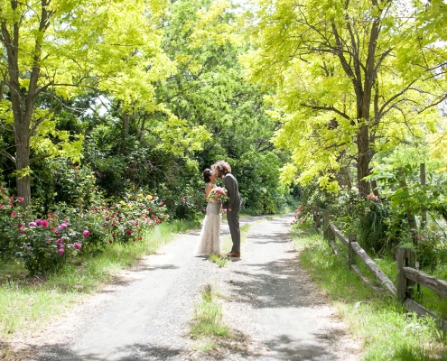 Bride and groom kissing at their spring wine country wedding in Sonoma by destination wedding planner Mango Muse Events