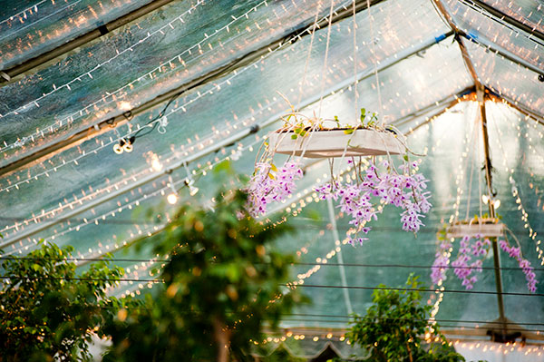 Hanging orchid chandeliers, live tree centerpieces and twinkle lights in a clear tent wedding reception in Hawaii by destination wedding planner Mango Muse Events
