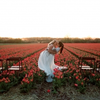 Epic wedding kiss in tulip fields at sunset for a same sex wedding elopement in Amsterdam Netherlands by destination wedding planner Mango Muse EventsEpic wedding kiss in tulip fields at sunset for a same sex wedding elopement in Amsterdam Netherlands by destination wedding planner Mango Muse Events