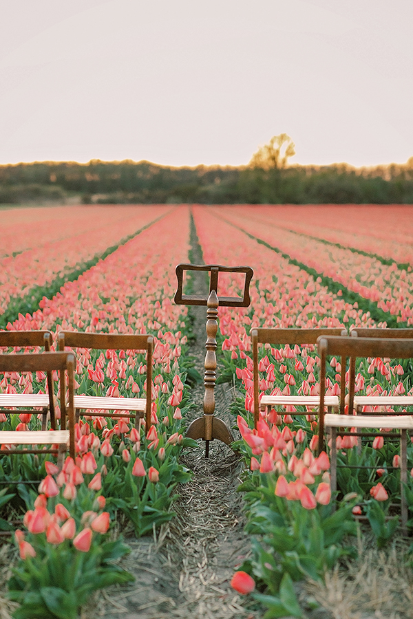 Spring micro wedding elopement ceremony in the tulip fields at sunset for a wedding in Amsterdam Netherlands by destination wedding planner Mango Muse Events